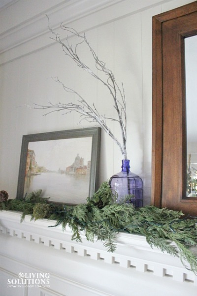 Winter Mantle