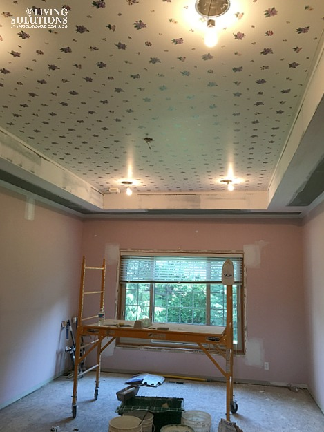 Progress Master Ceiling
