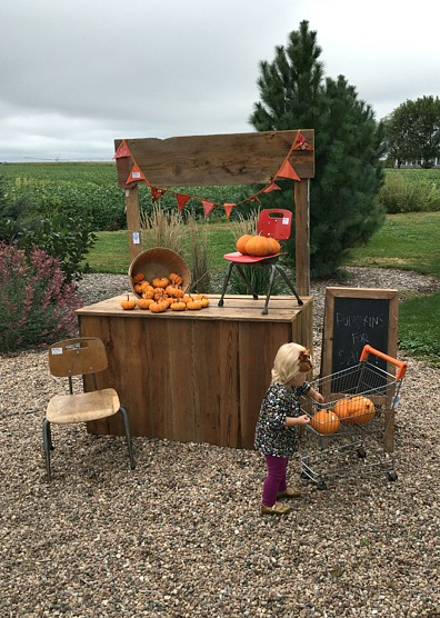 baby-girl-fall-pumpkins