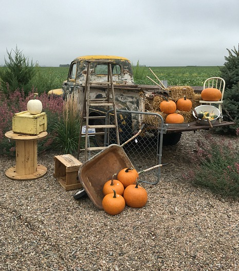 fall-farm-truck-and-pumpkins
